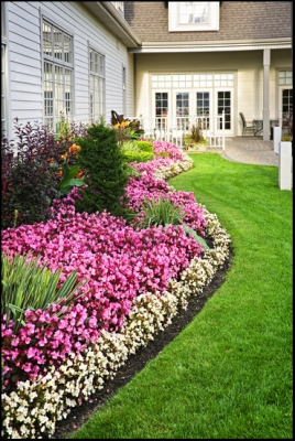 Az Desert Gardens Is Your One Stop Shop For Glendale Landscaping Services.  Providing The Highest Level Of Service And Quality, We Take On All  Residential ...